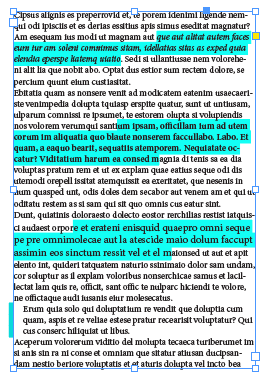InDesign text highlighted in blue